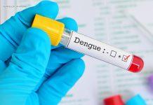 teste rápido dengue